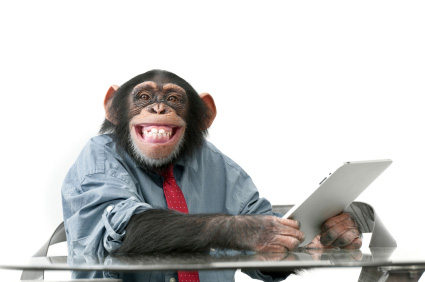 Monkey trying to use a computer